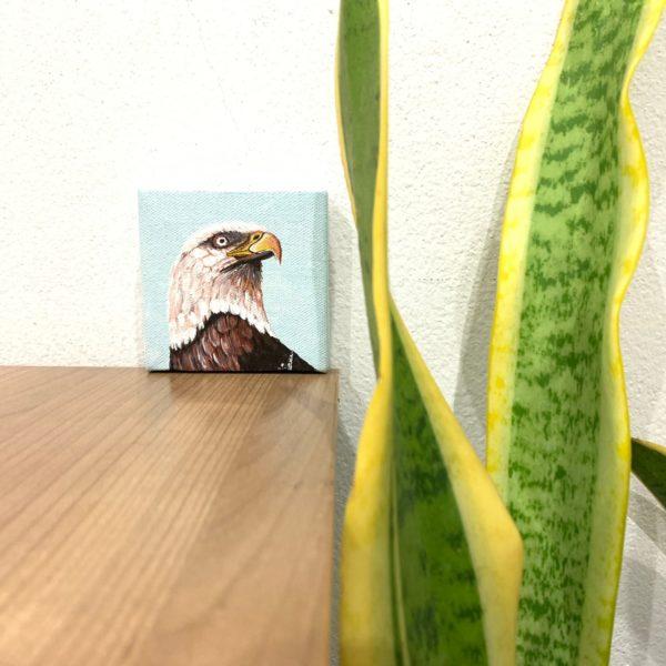 ภาพนกอินทรีย์